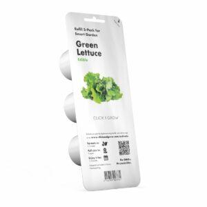 Green_Lettuce_3pack