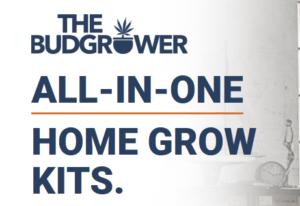 Home Grow Kits