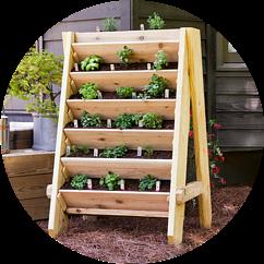 Shelf Herb Garden