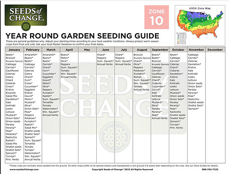 Zone 10 Vegetable Planting Schedule year round