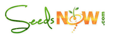 Seeds Now Banner