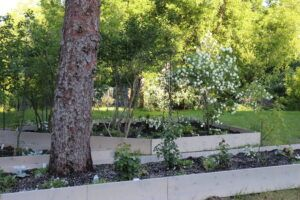 Raised Bed Moon Garden